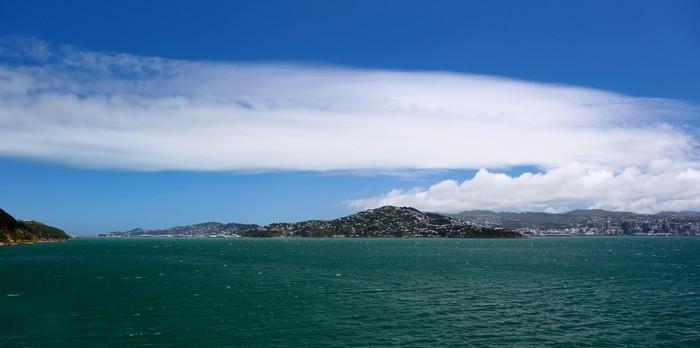 Vinylová Tapeta Wellington Harbour - Město