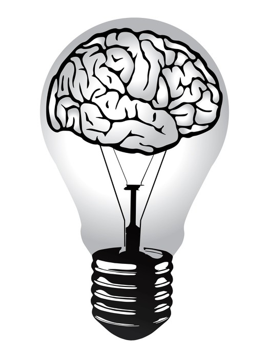 Wonderful Brain Light Bulb Vector Wall Decal Pictures