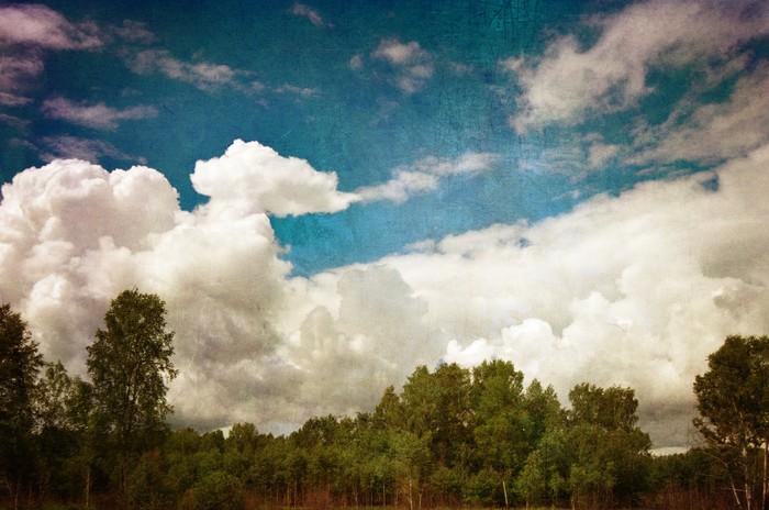 Vinylová Tapeta Zelené lesy proti modré zatažené obloze - Nebe