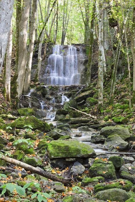 Vinylová Tapeta Vodopád v lese - Voda