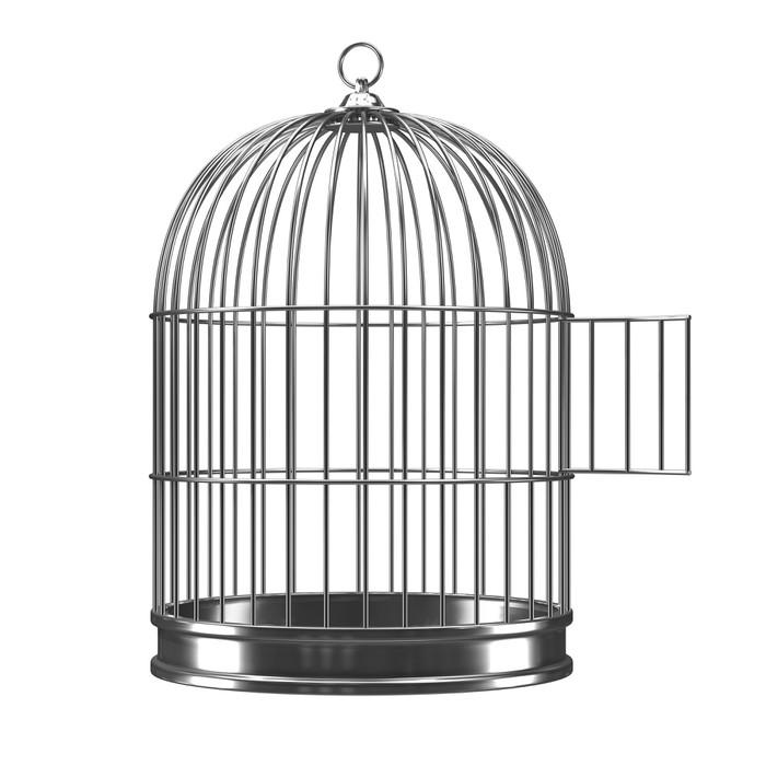 tableau sur toile 3d argent cage d 39 oiseau avec la porte ouverte pixers nous vivons pour changer. Black Bedroom Furniture Sets. Home Design Ideas
