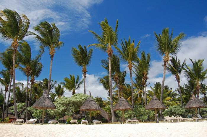 Vinylová Tapeta Ráj pláž Flic en Flac na ostrově Mauritius - Prázdniny