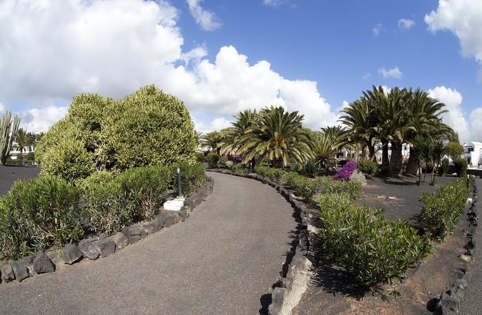 Vinylová Tapeta Tropischer Garten auf Lanzarote - Evropa