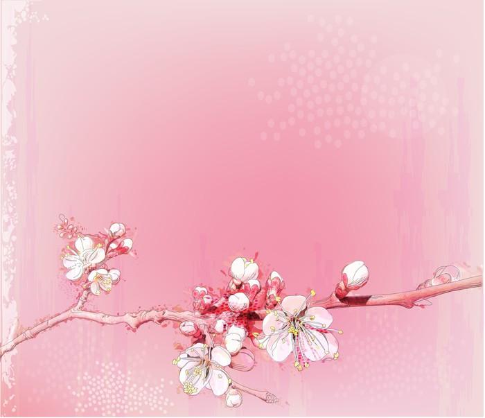 Papier Peint Japonais Cerisiers En Pleine Floraison Pixers Nous