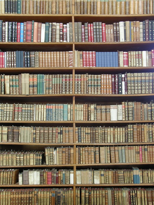 papier peint des rang es de livres sur les tag res de la biblioth que pixers nous vivons. Black Bedroom Furniture Sets. Home Design Ideas