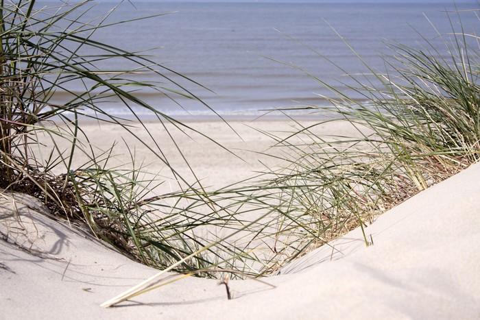 Vinylová Tapeta Duny na pláži - Voda