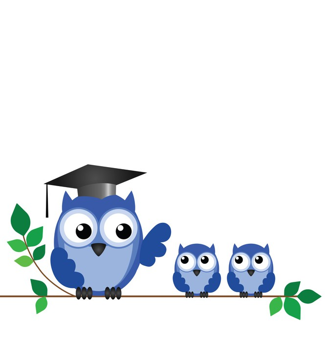 Owl teacher and pupils sat on a tree branch Vinyl Wallpaper - Education
