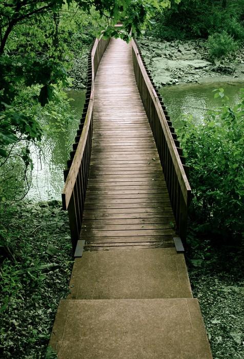 Vinylová Tapeta Most z lesa - Infrastruktura