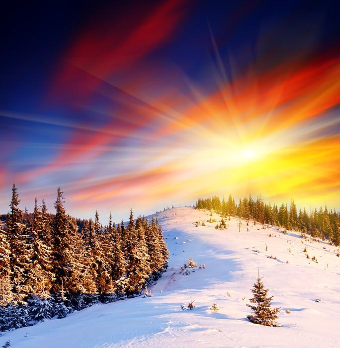 Vinylová Tapeta Zimní krajina - Prázdniny