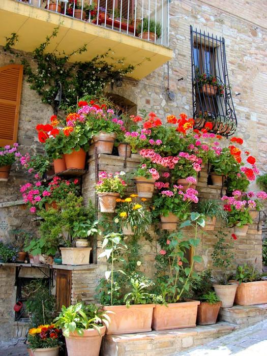 Fototapete bunte topfblumen entlang einer for Topfblumen wohnzimmer