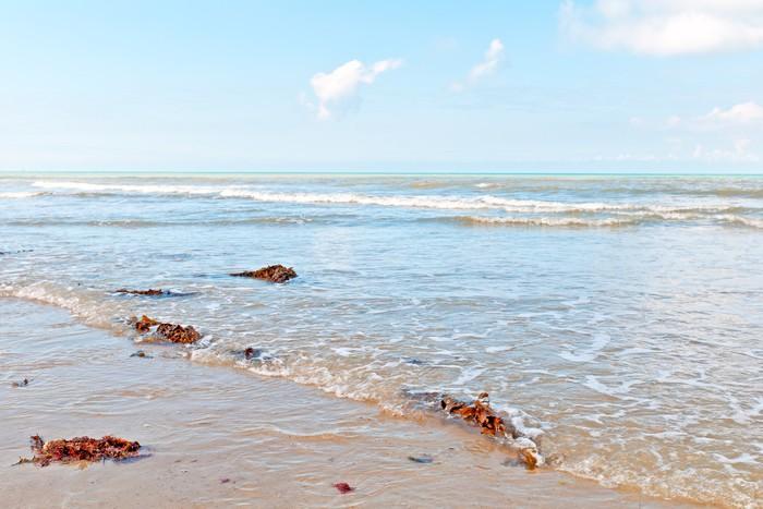 Vinylová Tapeta Krásná pláž v Normandii Francie na pozadí - Prázdniny