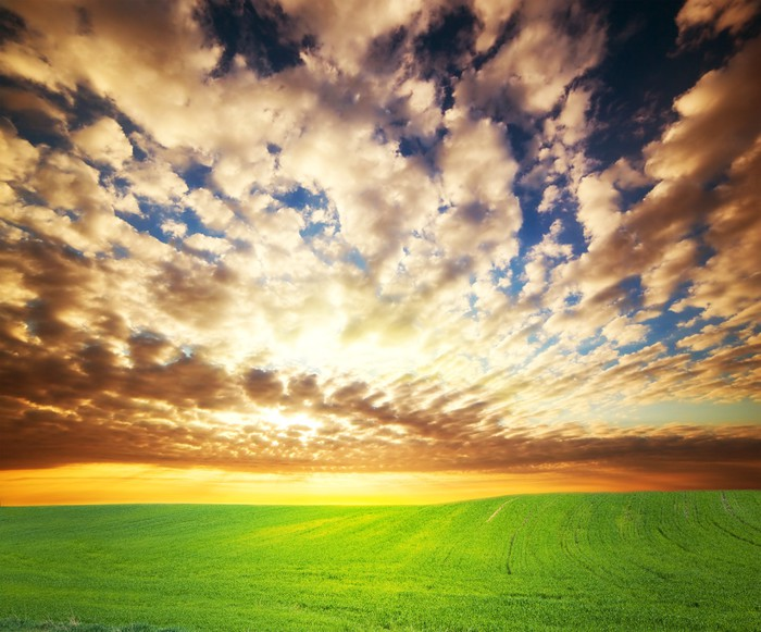 Vinylová Tapeta Západ slunce nad zelené louky - Roční období