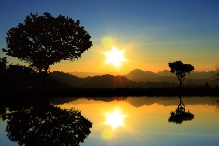 Vinylová Tapeta Silueta lesa - Přírodní krásy