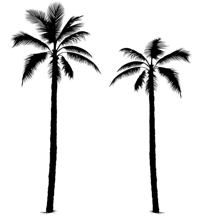 Vinilo Pixerstick Silueta de la palmera 1 • Pixers® - Vivimos para ...