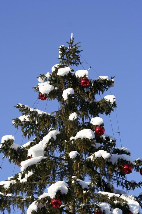 Vinylová Tapeta Tannenbaum mit roten Kugeln - Vánoční strom s červenými kuličkami - Mezinárodní svátky