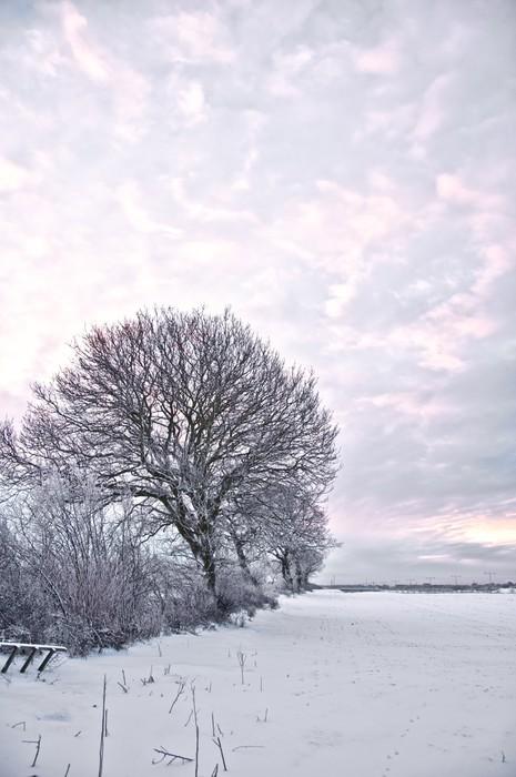 Vinylová Tapeta Winter Wonderland - Evropa
