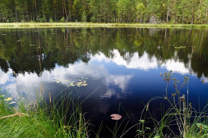 Vinylová Tapeta Mraky odraz v jezeře poblíž národního parku - Voda