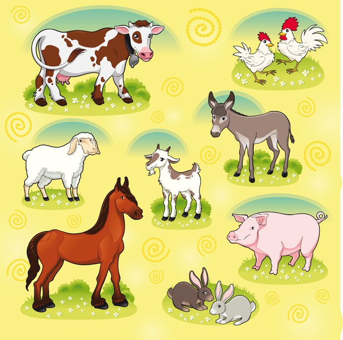 Farm animals. Vector and cartoon isolated characters. Wall Mural ...