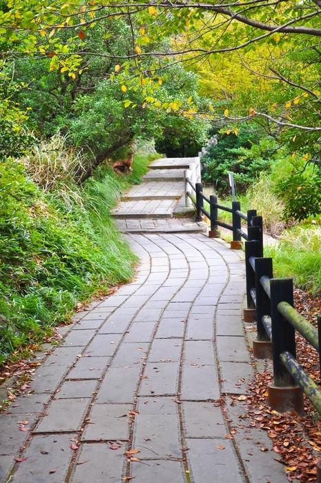 Vinylová Tapeta Chodník na hoře u Obama, Japonsko Unzen - Témata