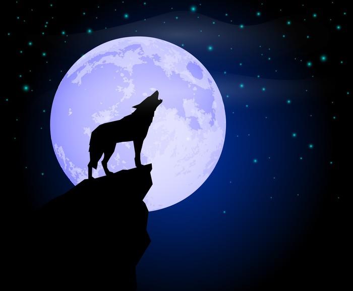 Fototapeta Wilk Wyje Do Księżyca W Pełni Pixers: Fototapeta Wilk Wyje • Pixers® • Żyjemy By Zmieniać