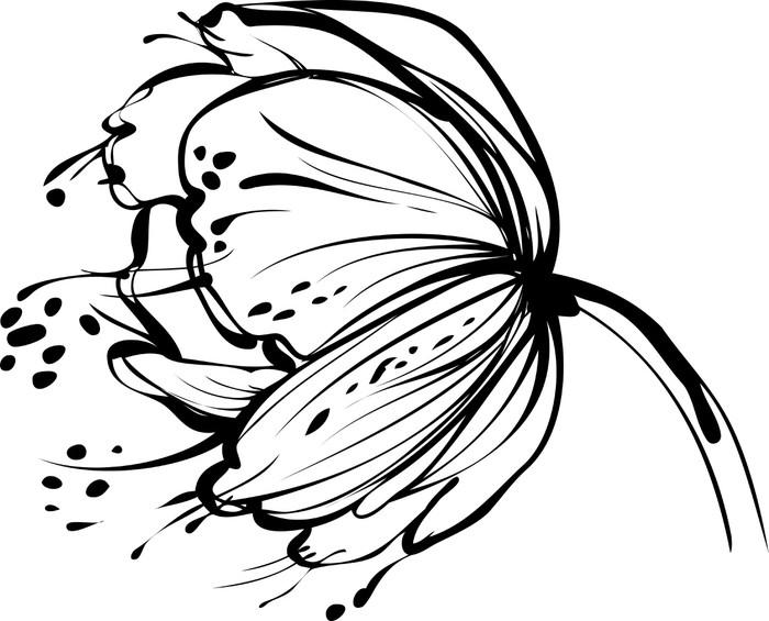 Vinylová Tapeta Bílá poupě - Květiny