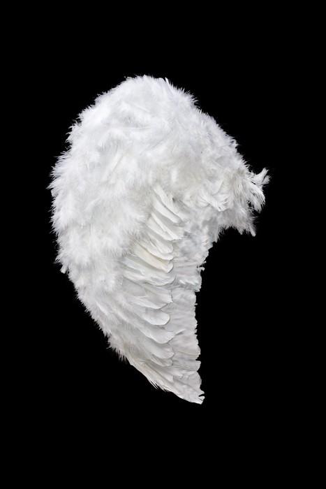 Vinylová Tapeta Bílý anděl křídlo - Značky a symboly