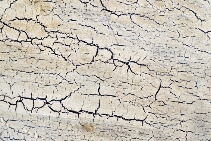 Vinylová Tapeta Bílý lak na dřevěné desce má popraskané - Domov a zahrada