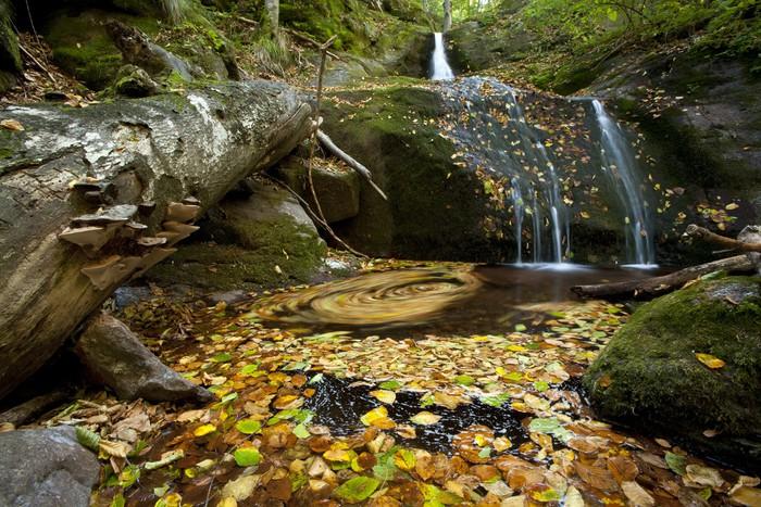 Vinyl-Fototapete Ein kleiner Wasserfall im Herbst Laub bedeckt. Langzeitbelichtung Schuss - Jahreszeiten