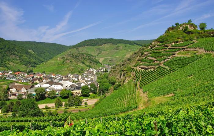 Vinylová Tapeta Sauffenburg v údolí Ahr v Mayschoss - Evropa
