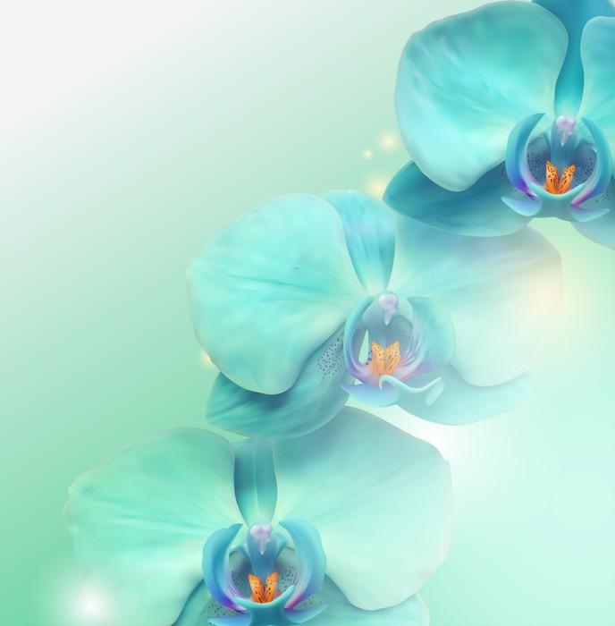 Tableau sur Toile Fleur d'orchidée fond - Thèmes