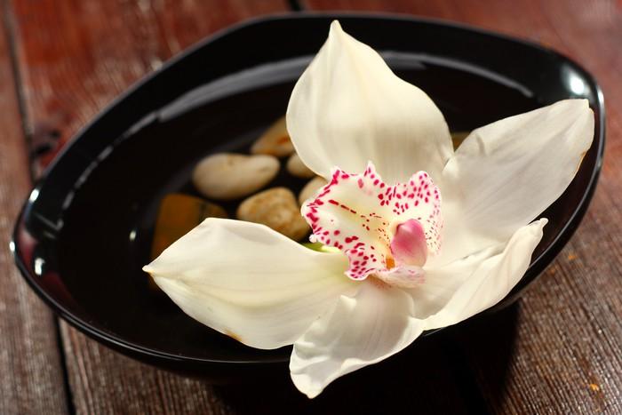 Vinylová Tapeta Orchidej na talíři - Přírodní krásy