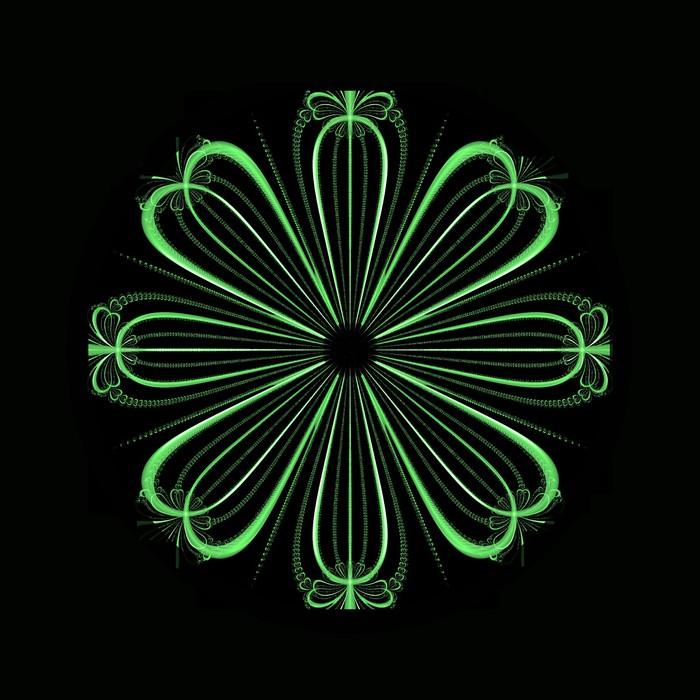 Papier Peint Floral Vert Sur Fond Noir Pixers Nous Vivons Pour