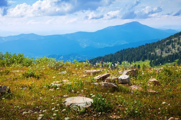 Leinwandbild einfache gebirgslandschaft pixers wir for Einfache leinwandbilder