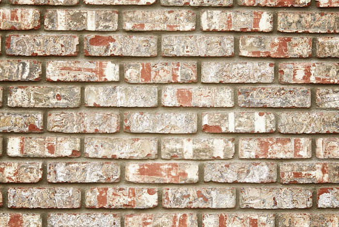 Carta da parati muro di mattoni faux pixers viviamo for Carta da parati muro di mattoni