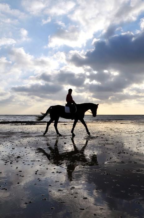 Vinylová Fototapeta Silueta Horse Rider Chůze na pláži - Vinylová Fototapeta
