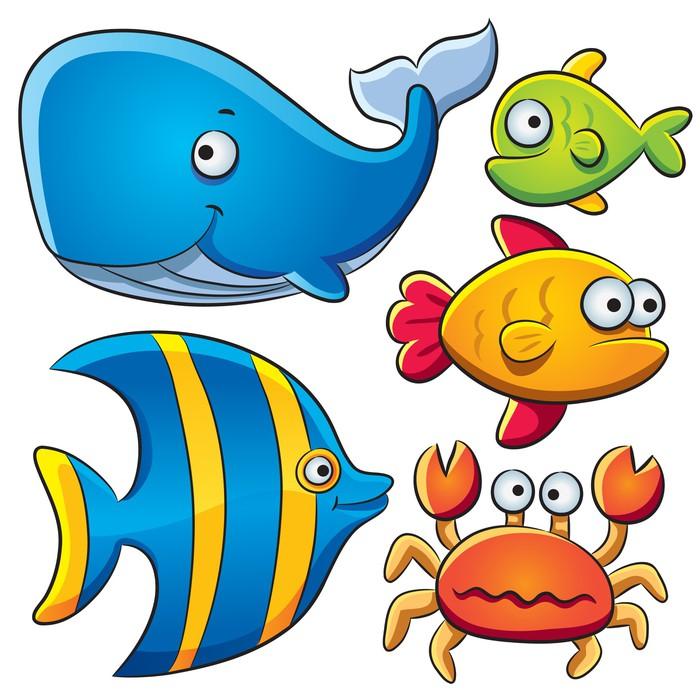 Výsledek obrázku pro mořské ryby