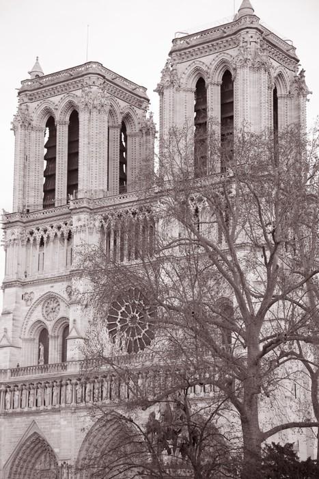 Vinylová Tapeta Notre Dame v Paříži, Francie - Evropská města