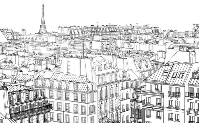 Vinil Duvar Resmi Paris'te çatılar -