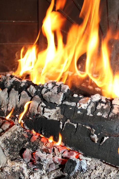 Vinylová Tapeta Fire, uhlíky - Struktury