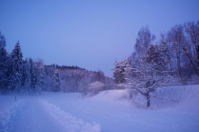 Vinylová Tapeta Krásná zimní krajina - Roční období