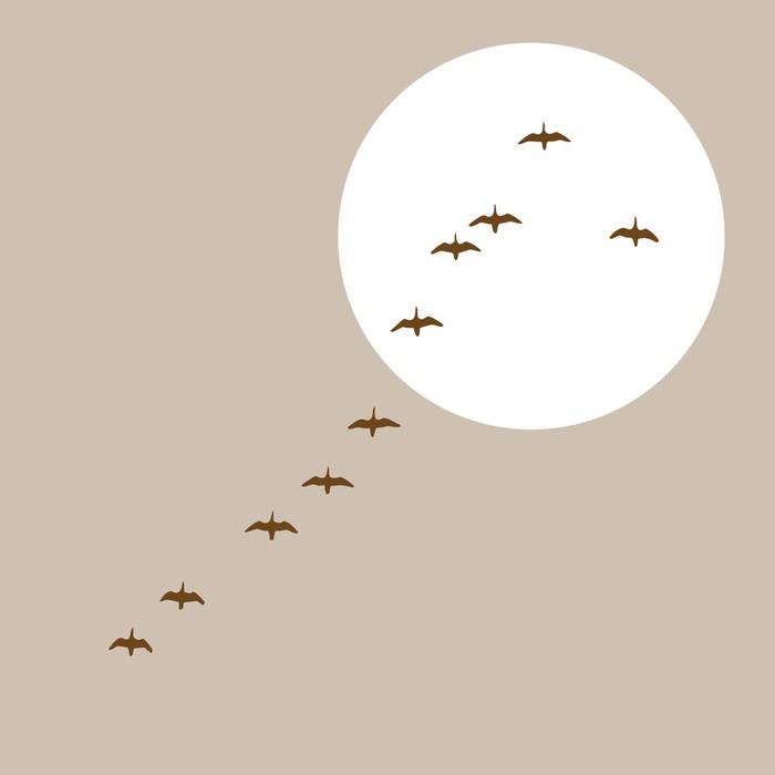 Nálepka Pixerstick Létající kachny silueta na solární pozadí - Ptáci