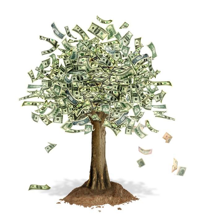 Papier peint vinyle Arbre de l'argent avec des billets de banque en dollars US à la place des feuilles. - Arbres