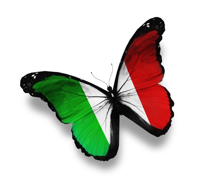 Italian Flag Butterfly Isolated On White Wall Mural