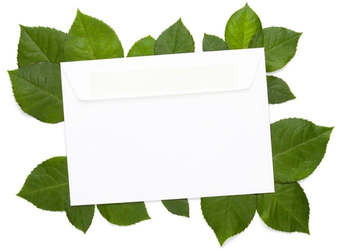 Vinylová Tapeta Eco dopis na bílé - Umění a tvorba