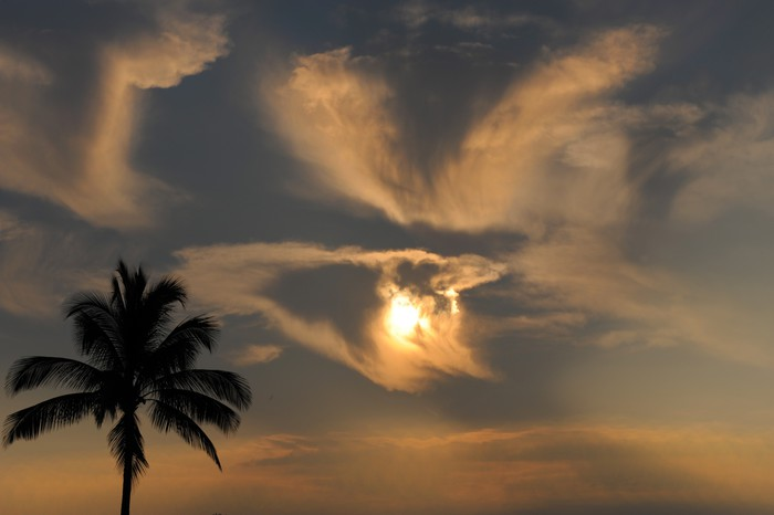 Vinylová Tapeta Hawaii sunset - Témata