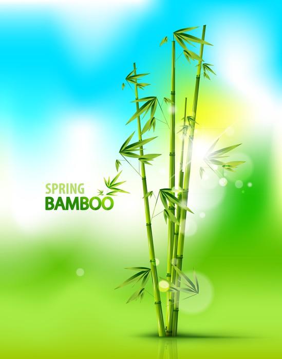 Vinylová Tapeta Bamboo pozadí - Pozadí