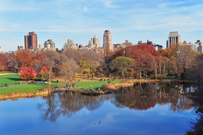 Vinylová Tapeta New York City Central Park na podzim - Amerika