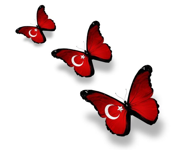 Vinylová Tapeta Tři turecké vlajky motýli, izolovaných na bílém - Národní svátky