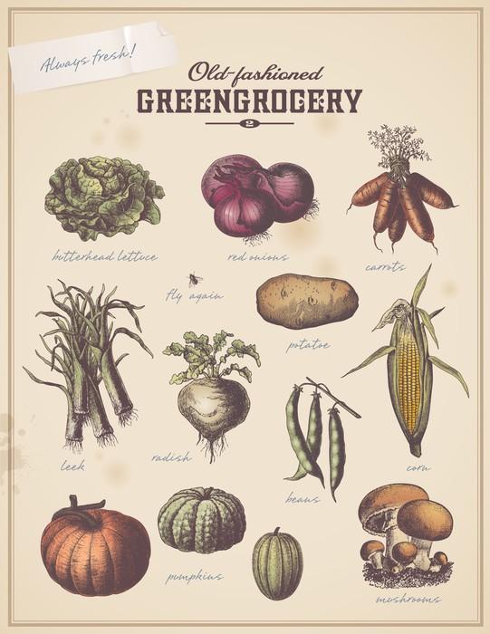 Papier Peint Vinyle Primeur du millésime pancarte avec différents légumes (2) -