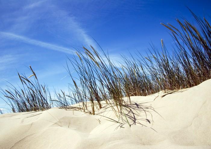 Vinylová Tapeta Dunes - Prázdniny